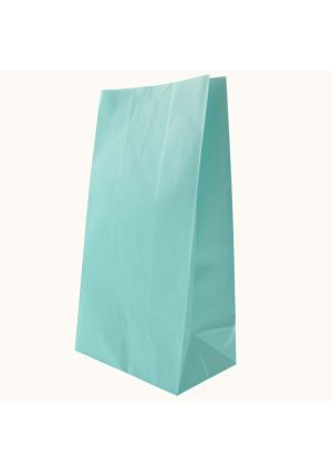 Powder Blue Paper Party Bags