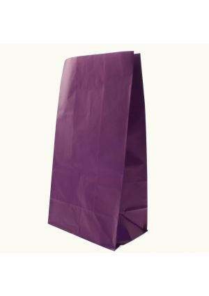 Purple Paper Party Bags